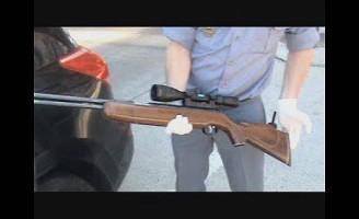 Dosar penal pentru o armă și muniție