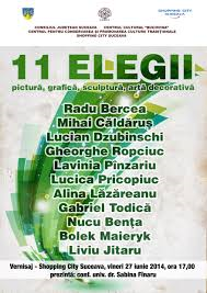 11+1 elegii