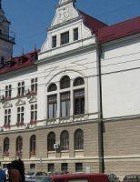 Consiliul Județean Suceava, proiect de consiliere psihopedagogică și psihologică, în mediul on-line, a părinților care se află la lucru în străinătate