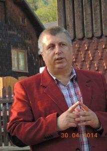 Neculai Bereanu, senator PSD