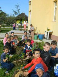 1. Răsădire de flori la Școala din Codru
