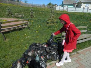 4. Activitate de ecologizare
