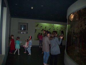 """De """"Noaptea muzeelor"""" țara este împânzită de muzee cu povești captivante"""