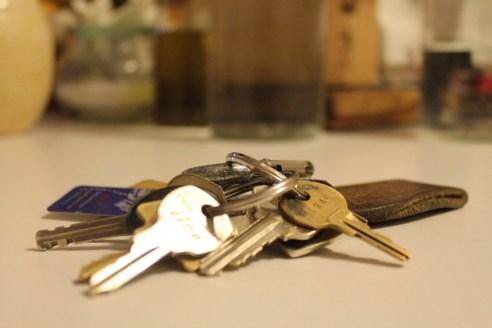 Tânăr prins de polițiști după ce a furat haine și chei de acces dintr-un  apartament din Rădăuți - SuceavaLIVE