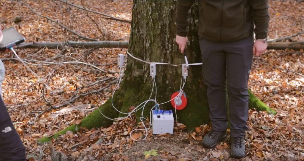 Holzindustrie Schweighofer, contribuție majoră la dotarea laboratoarului de biometrie forestieră din cadrul USV