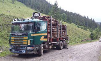 Amendă de 5.000 de lei pentru un bărbat care transporta material lemnos fără documente de provenienţă