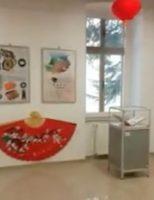 Expoziții temporare despre cultura și civilizația poporului chinez, la Muzeul Bucovinei