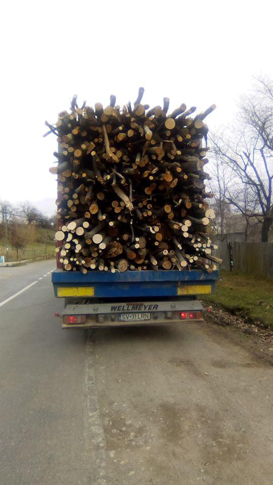 Un tir încărcat cu lemne a pus în pericol siguranța participanților la trafic, în zona Fălticeni