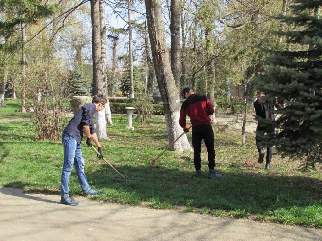 Acțiuni de ecologizare și plantare de arbori, în Fălticeni