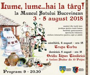 www.muzeulbucovinei.ro