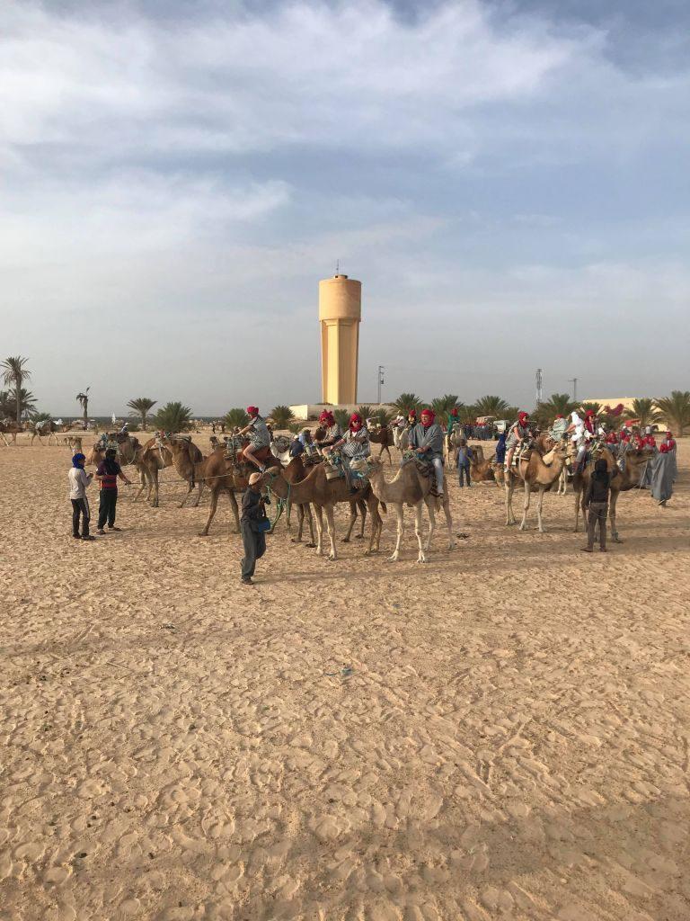 Plimbare cu cămila în deșert